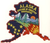Abzeichen Forestry Division Firefighter Alaska